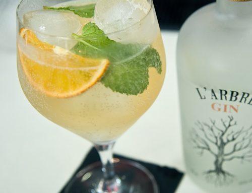 Còctel de gin amb ginger ale