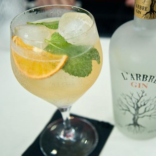 recepta-coctel-gin-ginger-ale