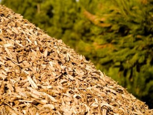 Biomassa Font d'Energia