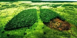 Portal canvi climatic