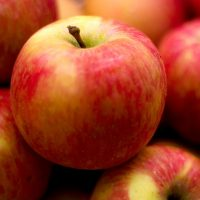 collita de pomes
