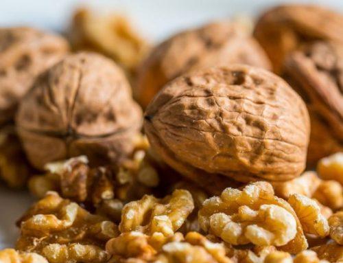 La fruita i els fruits secs, dins l'alimentació diària