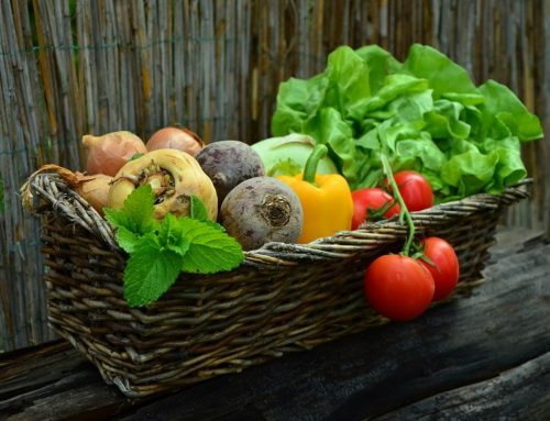 Firagost, la fira de productes agroalimentaris