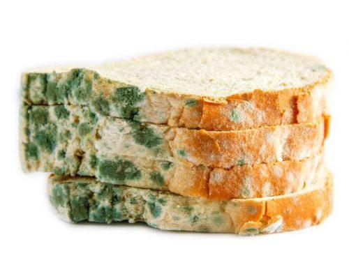 10 aliments que no caduquen mai