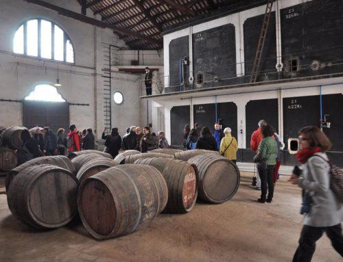 El Museu de les Cultures del Vi custodia més de 17.000 peces