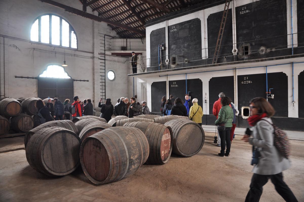 El Museu de les Cultures del Vi