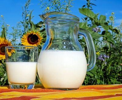 llet catalana