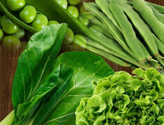 Verdures ecològiques Hort del Silenci