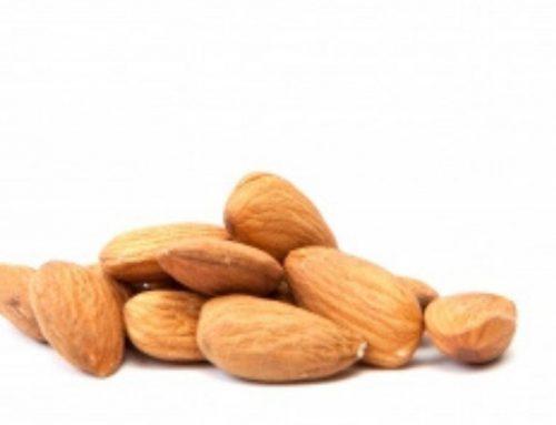 L'ametlla, un fruit sec amb alt contingut en calci, proteïnes i vitamina B