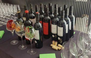 Debina Wine Solutions