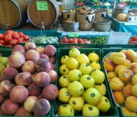 Fruites Barberà S.L.