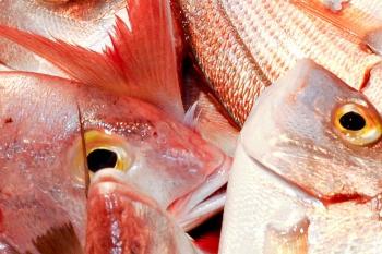 Peixos Savall