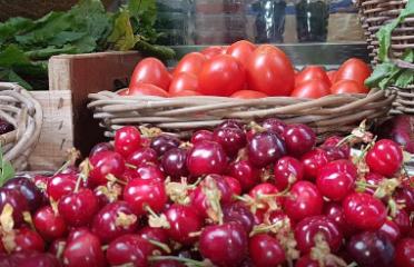 Fruiteria i Queviures Marina