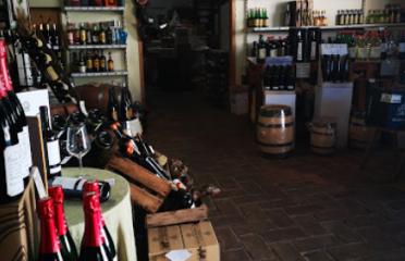 Vins Carbonell