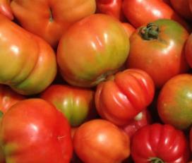 Verd Fruit Arán S C P