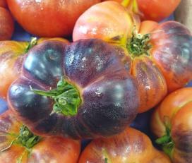 Fruits Dondara