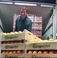 Fruites Higueras