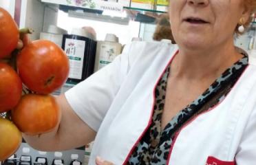 María Teresa Pallarés Povill