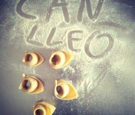 Can Lleó