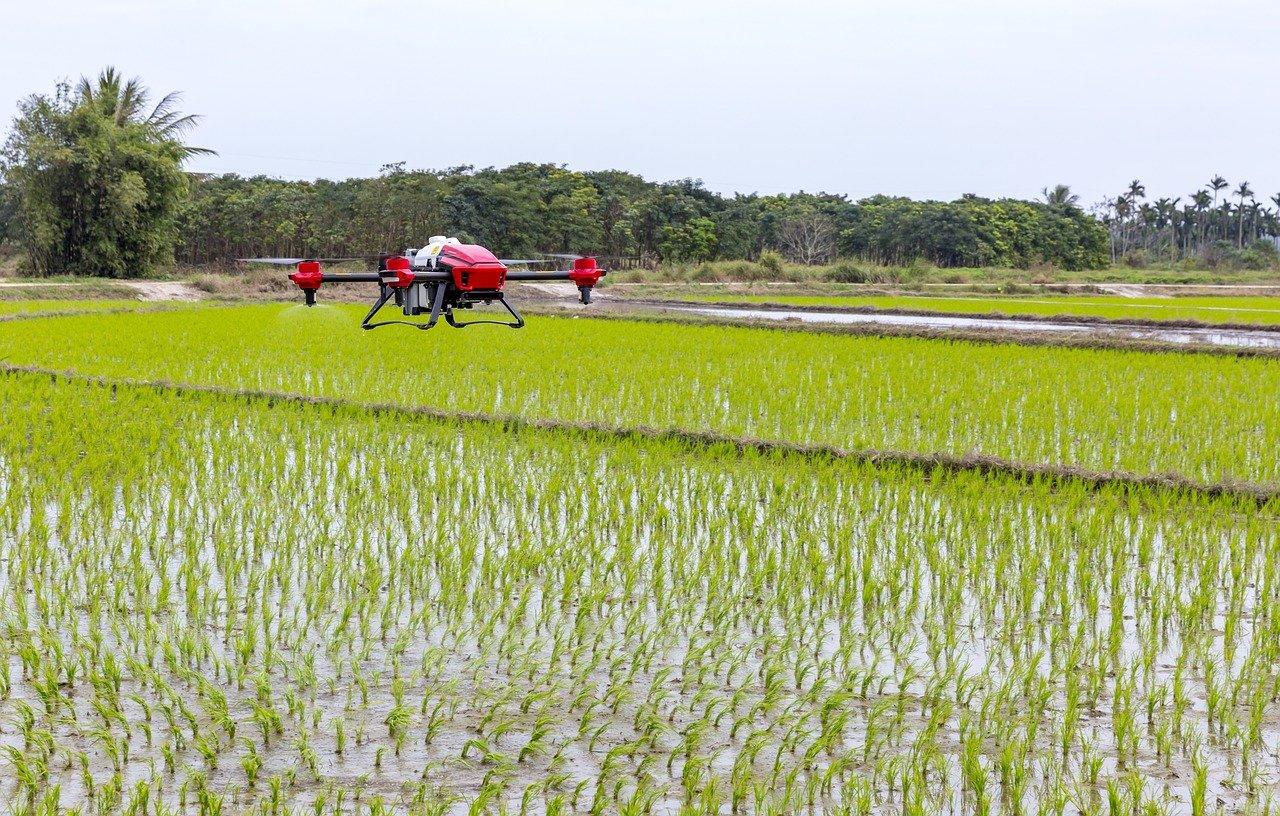 Innovació Tecnològica Agroalimentària