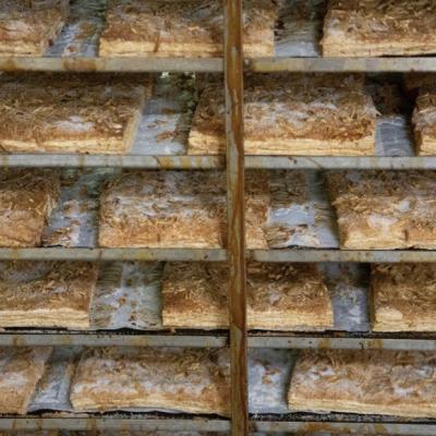 Forn Franquesa – Coques de Perafita